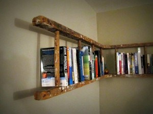 Ladder Turned Bookshelf