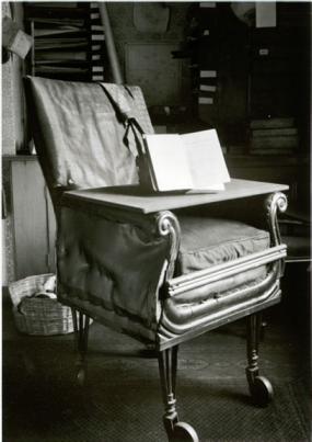 Charles Darwin's Chair
